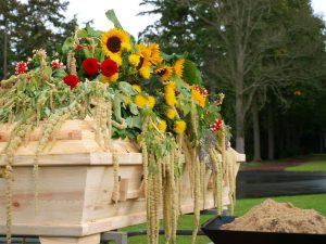 funeral-pine-coffin-sunflower-dreamstime_m_21828155